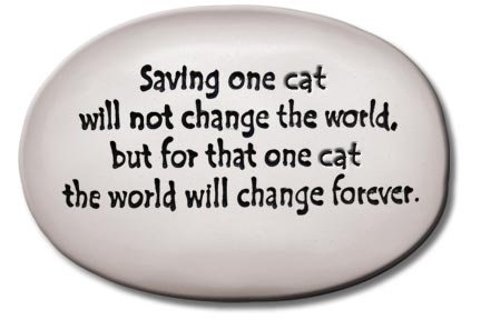 "3.5""x5""x1   ""Saving one cat will not change the world but for that one cat..."""