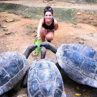 Hanging with the tortoises in Seychelles