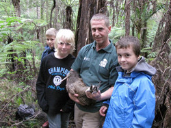 Kiwi Release