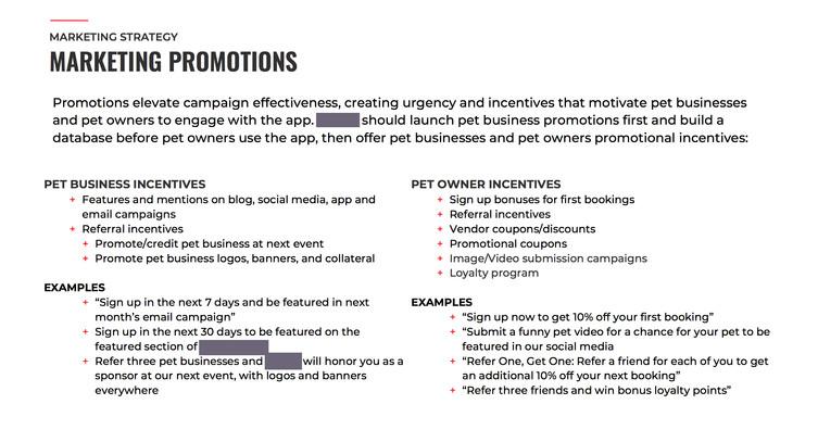 MarketingPromotions_PetApp01.jpg
