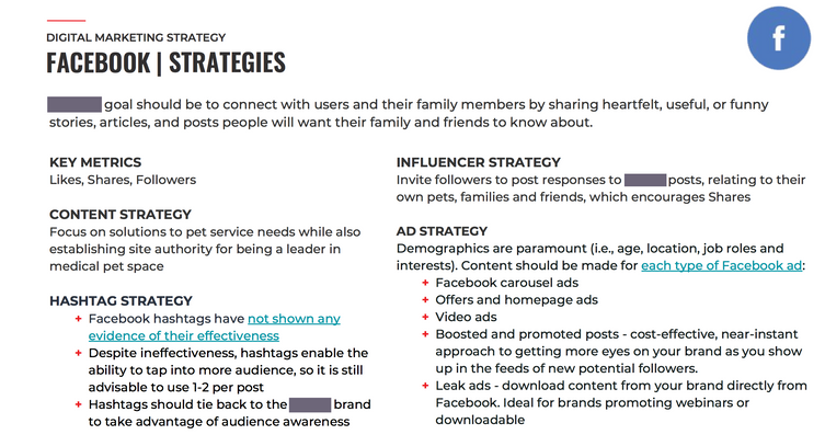 FacebookStrategies_PetApp01.png