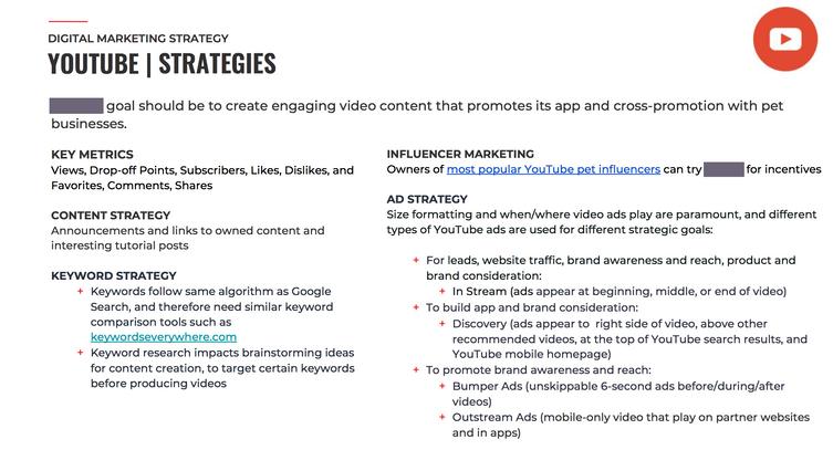 YouTubeStrategies_PetApp01.png