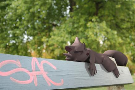 FINAL-SquirrelBench.jpg