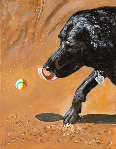 Dog & Ball 2.jpg