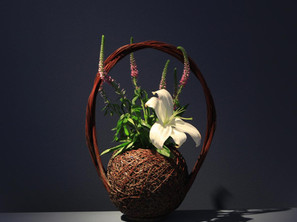 EXTENDED: Ten Thousand Flowers