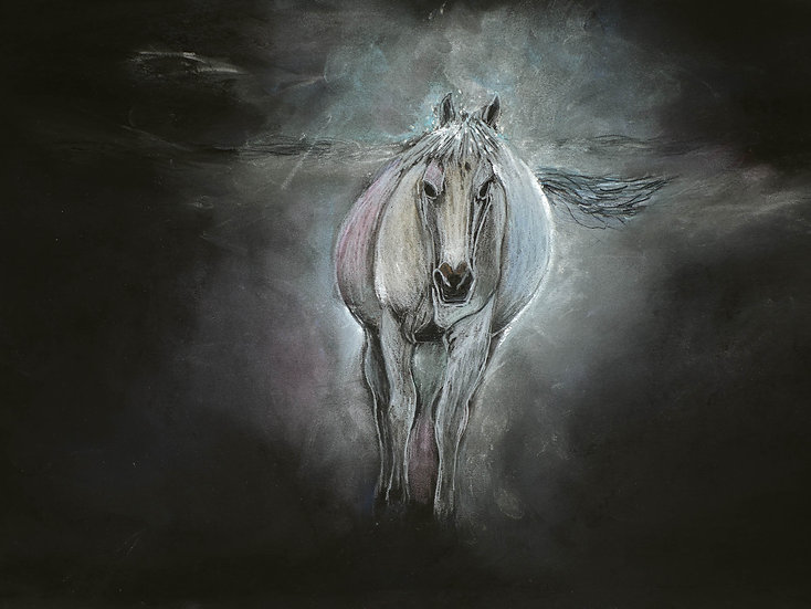 Night Horse Archival Print