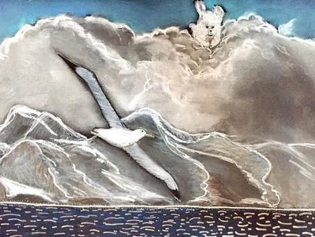 Looking for the Wandering Albatross