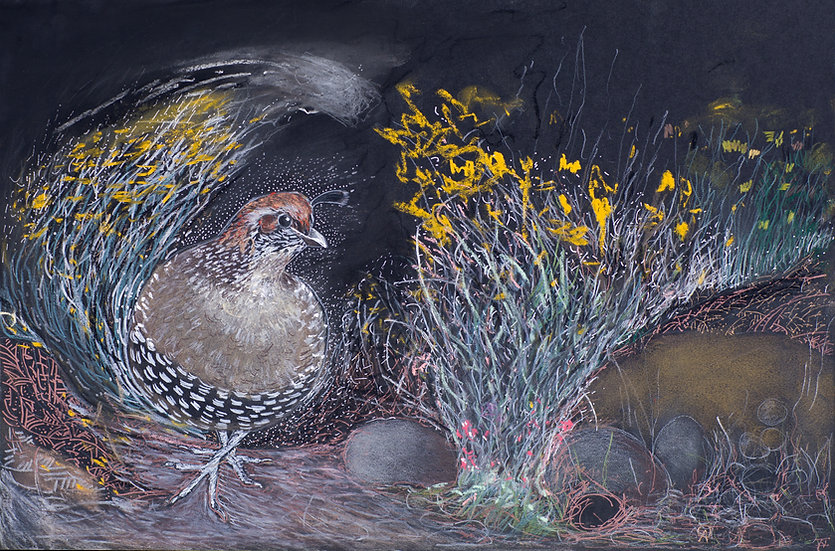 Quail Caught in a Gust of Autumn Wind