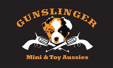 Gunslinger logo.jpg