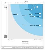 Forrester real-time analytics.jpg