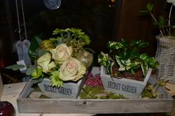 Montage fleurs et plantes