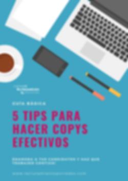 Guía básica Copys.png