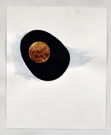 Avocado Wolf Moon