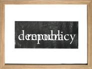 democracy/republic