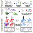 Single-cell RNA-seq with spike-in cells enables accurate quantification of cell-specific drug effects in pancreatic islets