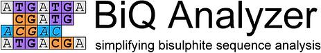 BiQ Analyzer