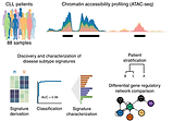 Chromatin accessibility maps of chronic lymphocytic leukaemia identify subtype-specific epigenome signatures and transcription regulatory networks