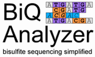 BiQ Analyzer: visualization and quality control for DNA methylation data from bisulfite sequencing