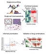 Combined chemosensitivity and chromatin profiling prioritizes drug combinations in CLL
