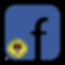 Facebookbr.png