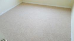Carpet on Floor 2