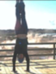 social circus, aerial acrobatics, classes, boston, jamaica plain, birthday, trapeze