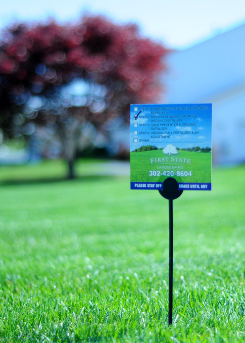 first state landscaping full service lawn care