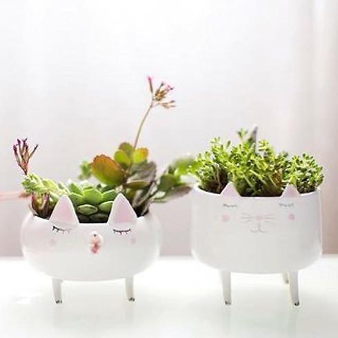 Plantenpotje maken van Keramiek