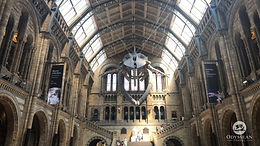 London's Natural History Museum