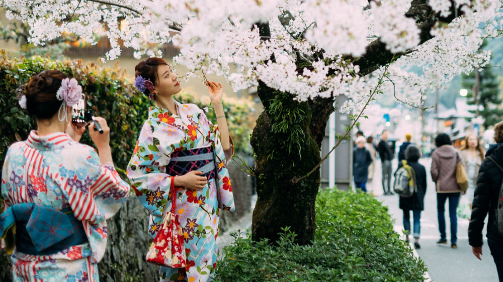 two ladies pose for a photo under a cherry tree during sakura, Japan
