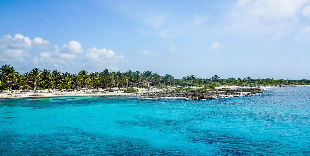 turquoise water and white sand with palm trees in Cozumel, Mexico
