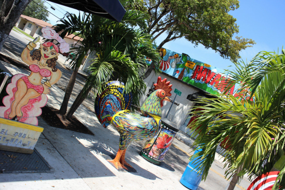 The Best Things to do in Miami