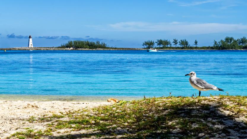 Beaches of Nassau