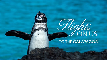 Flights on us to the Galapagos