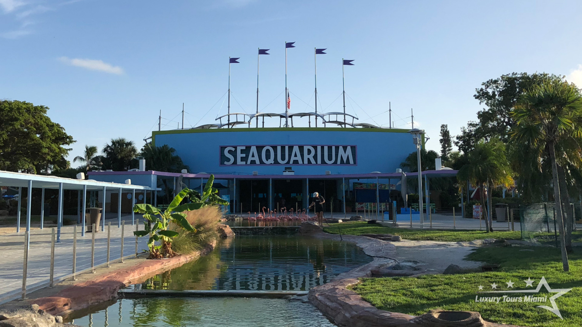 Welcome to the Seaquarium