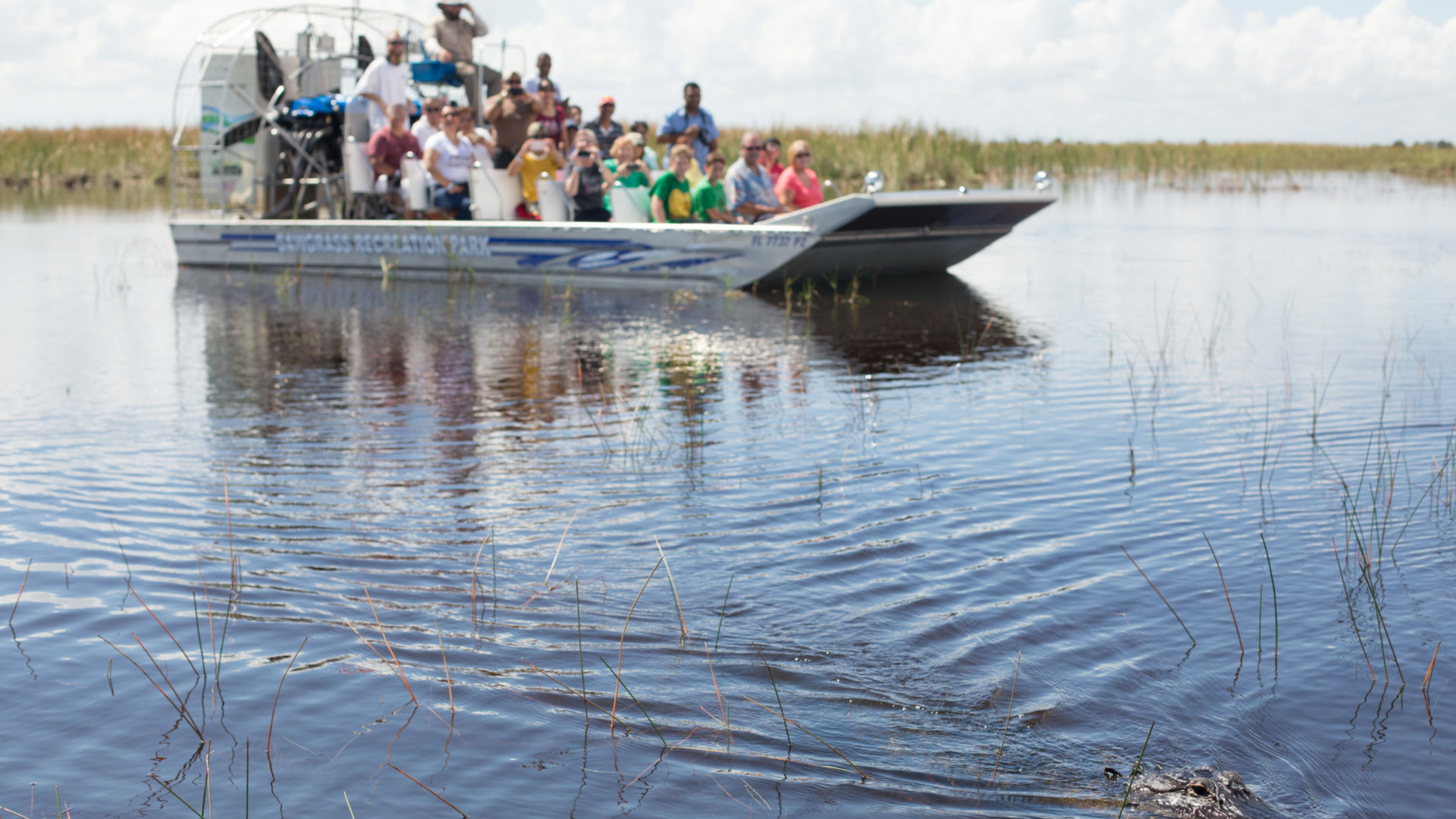Airboat by Day