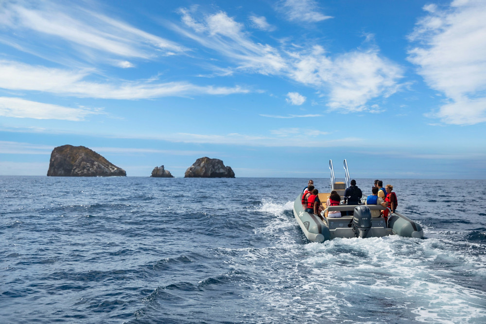 A private, small group expedition to a remote section of the Galapagos Islands with Celebrity Cruises