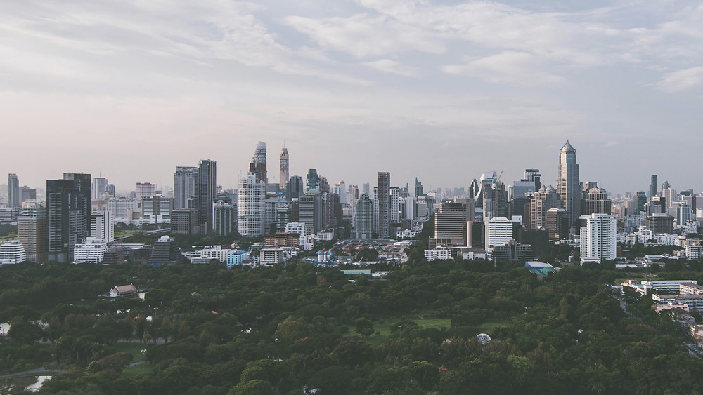 Park and trees before buildings of Bangkok's skyline