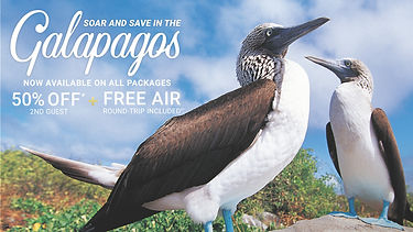50% Off 2nd Guest + FREE Air Round-Trip Included