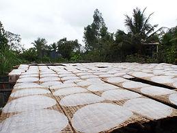 Sau Hoai's Rice Paper Factory