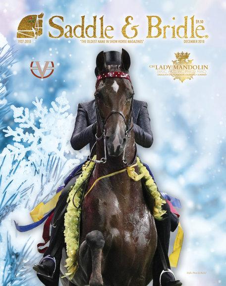 GOTH_SaddleAndBridle_DecemberCover2018_F
