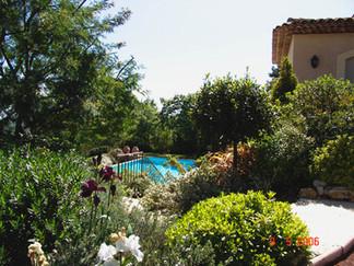 garden & pool.jpg