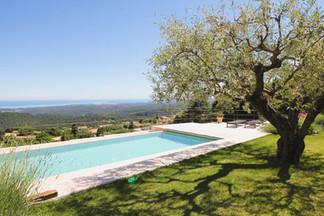 Pool thru olive.jpg