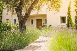 Rise lavender to front door.jpg