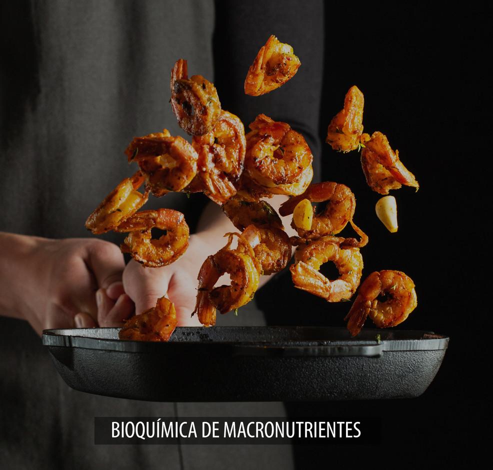 BIOQUÍMICA_DE_MACRONUTRIENTES.jpg