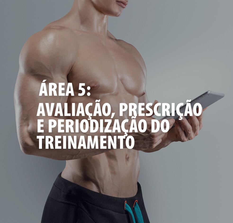 AREA 5.jpg