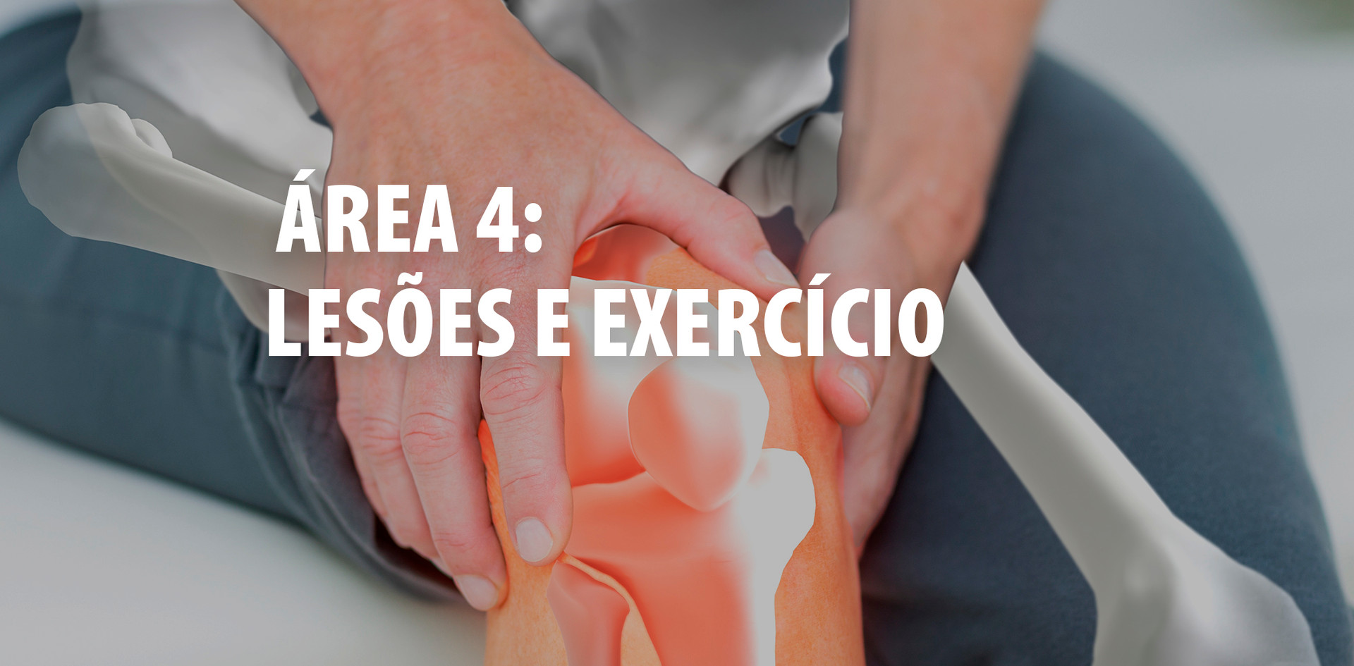 AREA 4.jpg