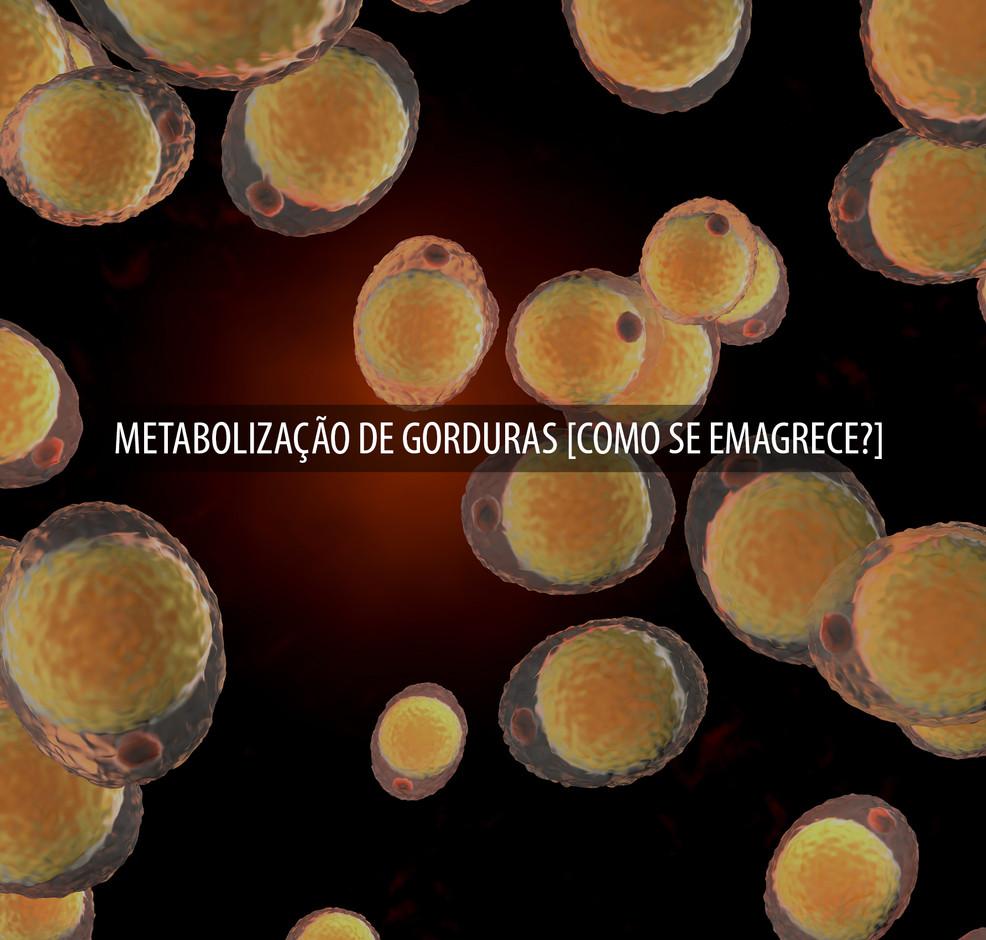 METABOLIZAÇÃO_DE_GORDURAS__COMO_SE_EMA