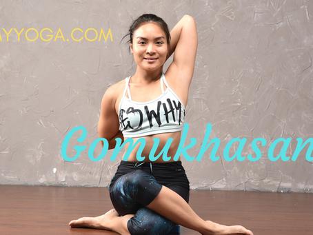 Tư thế Đầu Bò & Tư thế Khúc Gỗ trong Yoga