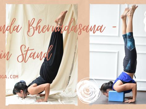 Ganda Bherundasana - Tư thế Đứng Bằng Cằm trong Yoga